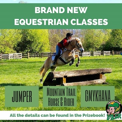 BRAND-NEWEQUESTRIAN-CLASSES-min